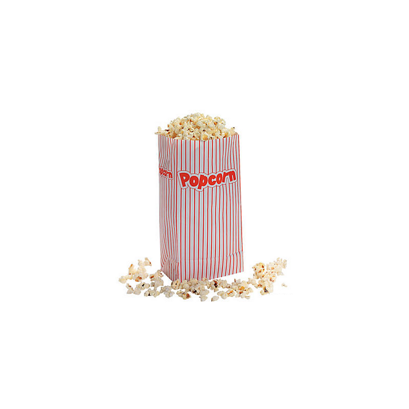 Popcorn papieren zakken @joyenco.nl